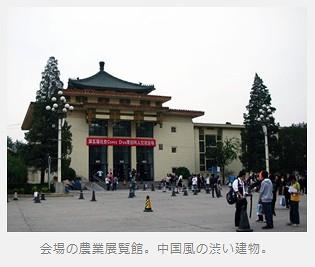 Jak to vypadá na čínském conu