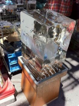 Ledová tradice v Akibě