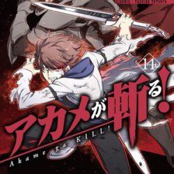 Manga Akame ga Kill! skončí na konci roku