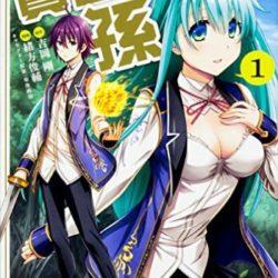 Novela Kenja no Mago se dočká anime